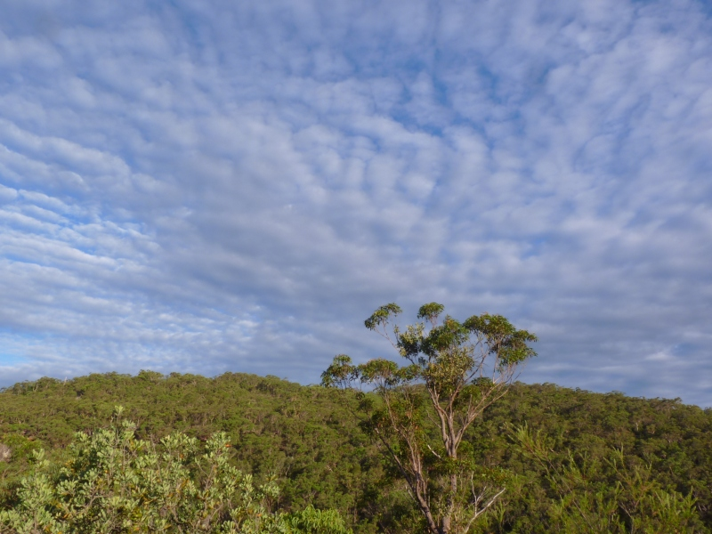 great sky near Berowra for crop