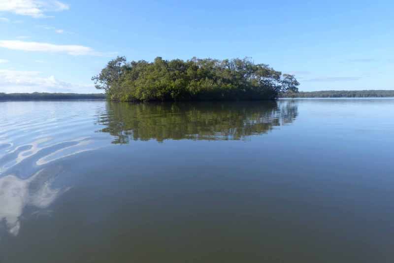 Island in river mouth small.jpg
