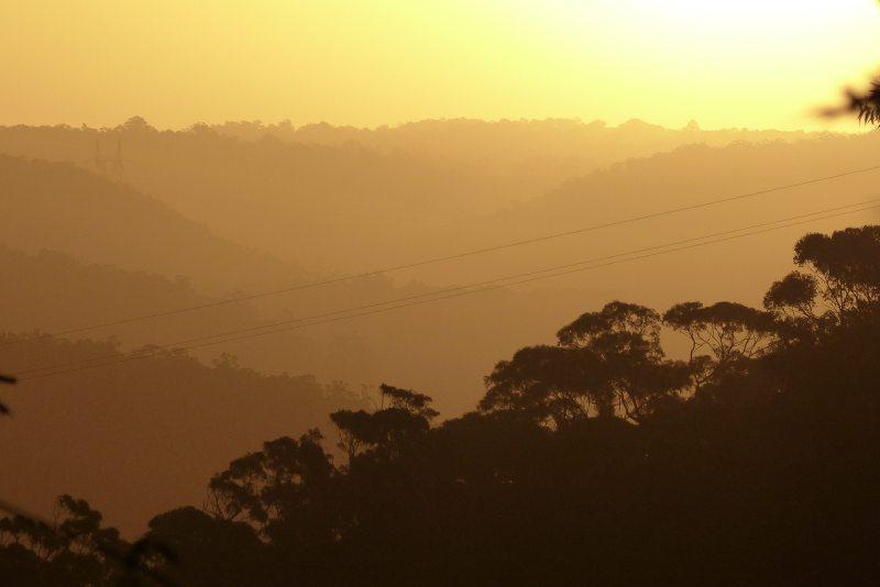 yellow sunset medium.jpg