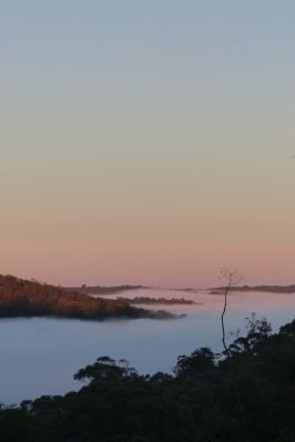 Dawn in paradise: a winter's view from the back deck
